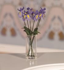 wunderschöne Schwertlilien Six Beautiful Irises