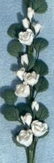 weiße Rosen String of White Roses