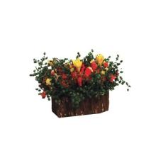 Blumen im Holztrog Flowers in Trough