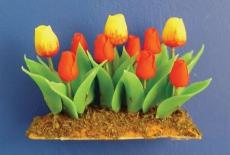Tulpen-Garten Tulip Garden