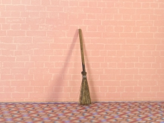 Kehrbesen Natural Sweeping Brush/Broom