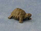 große Schildkröte large Tortoise