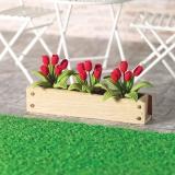 Blumenkasten rote Tulpen Window Box red Tulips