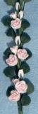 rosa Rosen String of Pink Roses