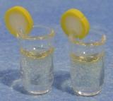 zwei Getränke mit Zitrone Pair of Drinks