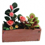 Blumenkasten mit rosa Rosen Window Box with pink Roses