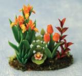 Iris- und Tulpen-Garten Iris & Tulip in Garden