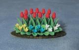 Tulpen-Beet Tulip & Bed Plants Garden